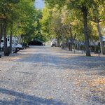 Looking down the lane towards the group shelter at Brookside RV Park and Campground